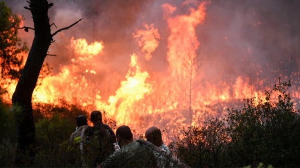Εθνική τραγωδία: Πάνω από 50 φτάνουν οι νεκροί από τις πυρκαγιές