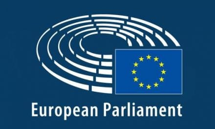 Turkey and the newly elected European Parliament
